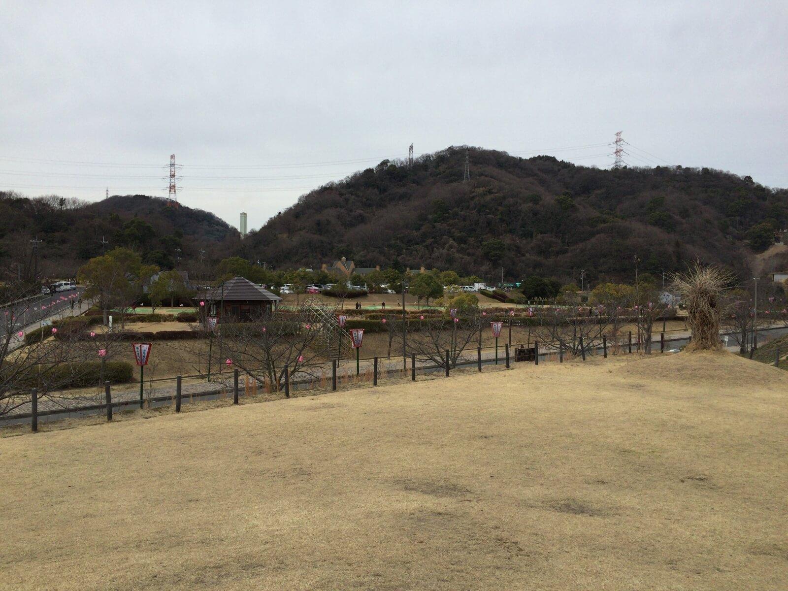 桜の開花はまだまだのみやま公園